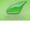 Interfaceware-Iguana Interface Engine for Healthcare