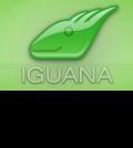 Interfaceware-Iguana Interface Engine for Healthcare